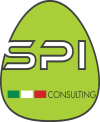 SPI CONSULTING